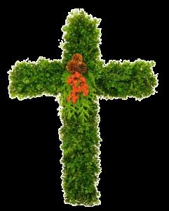 boxwood cross